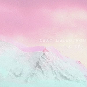 Dead mellotron - is it 300