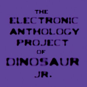 Electric anthology project dinosaur jr 300